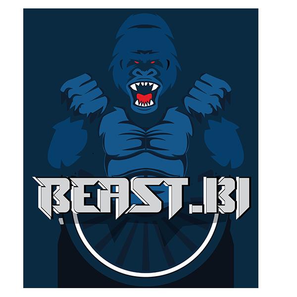BeastBI GmbH